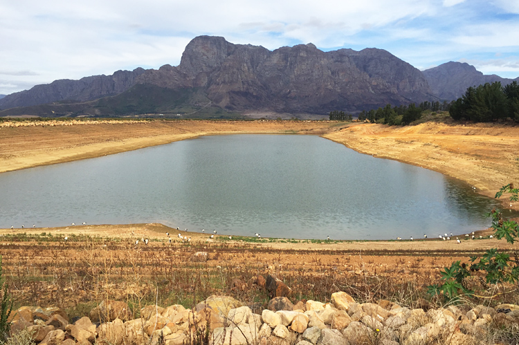 cape town, dam level, drought, water restrictions,